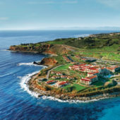 aerial of resort along green coast