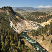 river Yellowstone National Park