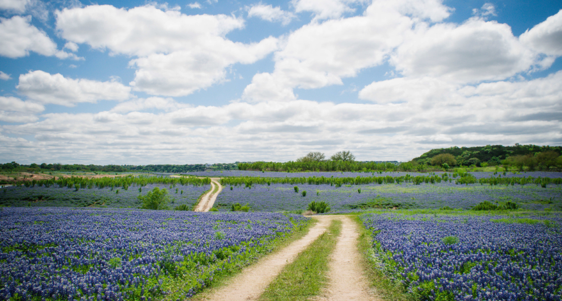 7 Things to Do in Texas Hill Country