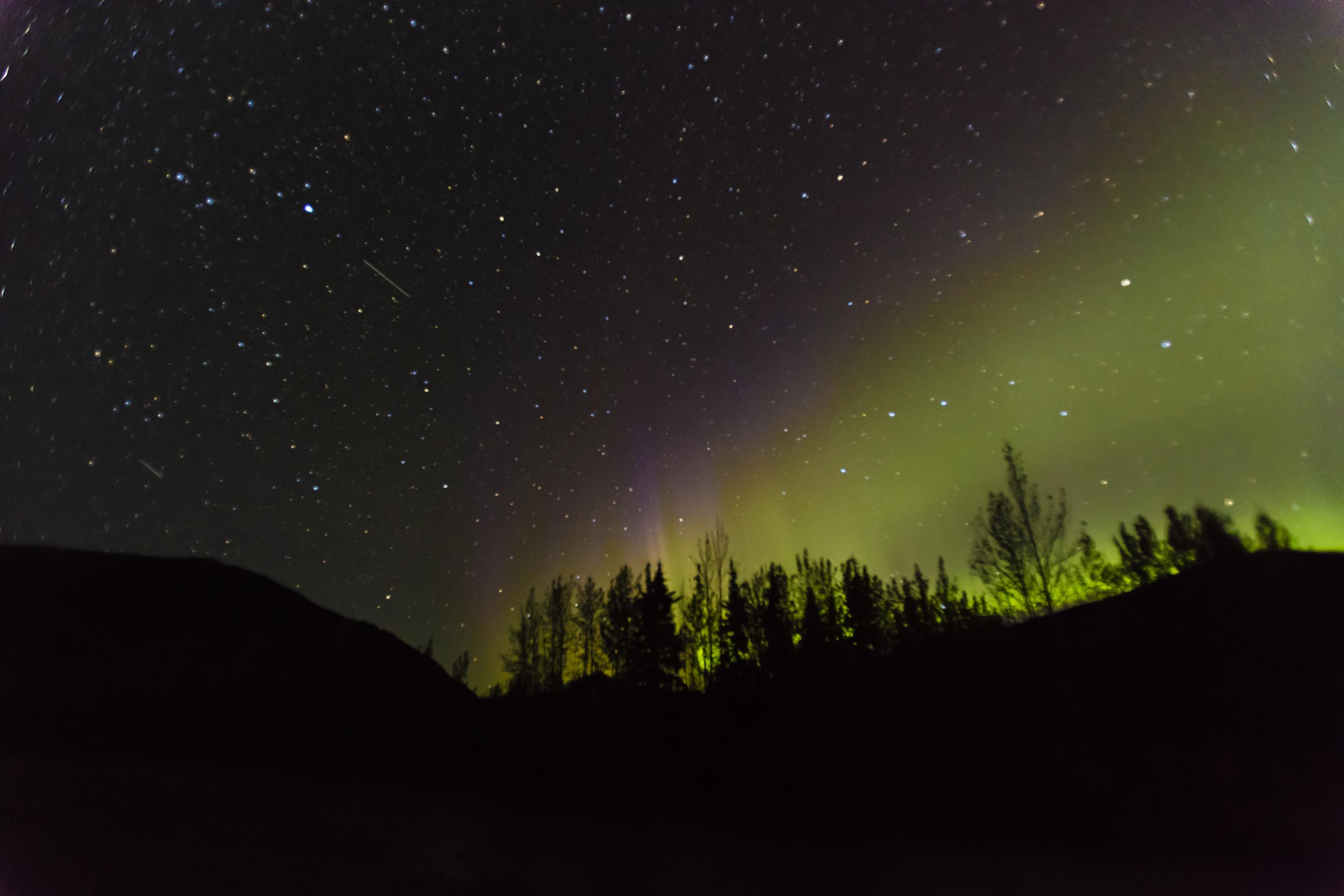 aurora-borealis-denali-national-park.jpg?mtime=20190116211228#asset:104513