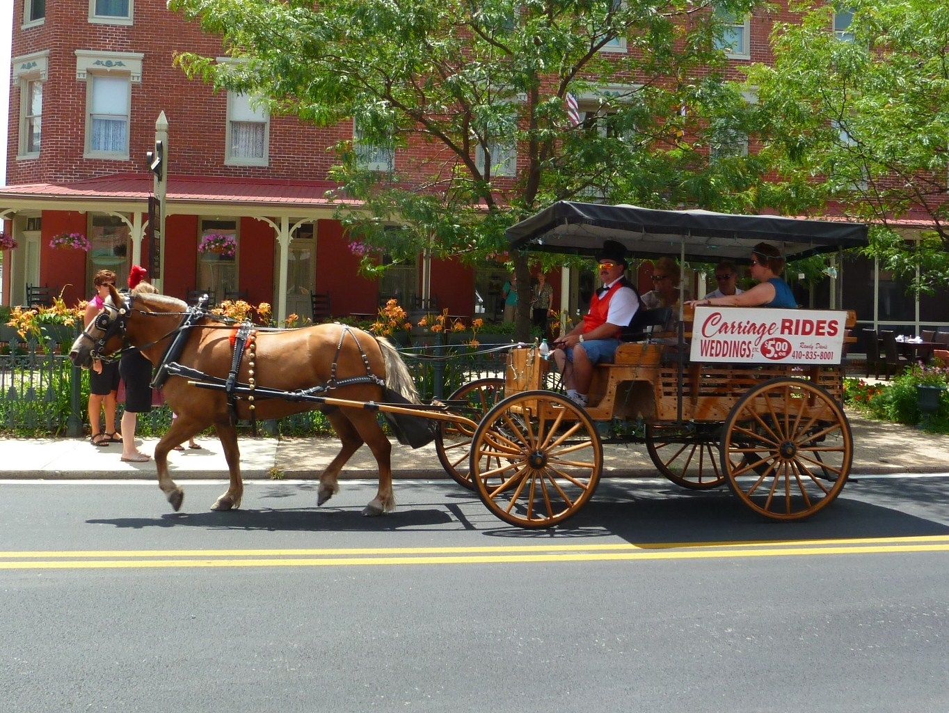 berlin-maryland-horse-and-carriage-rides.jpeg?mtime=20140903194310#asset:17333