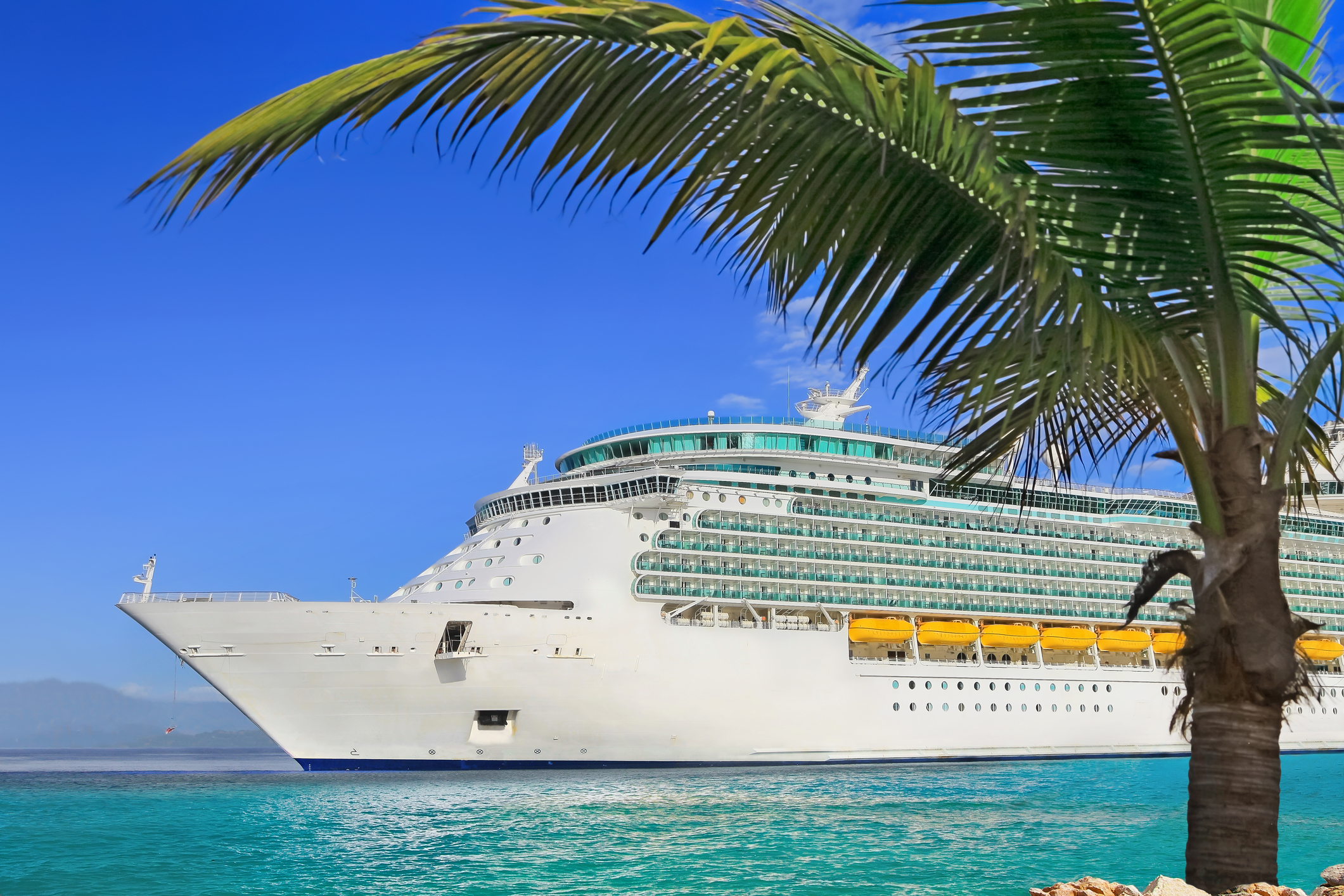 cruise-ship-palm-tree.jpg?mtime=20190320094615#asset:105218