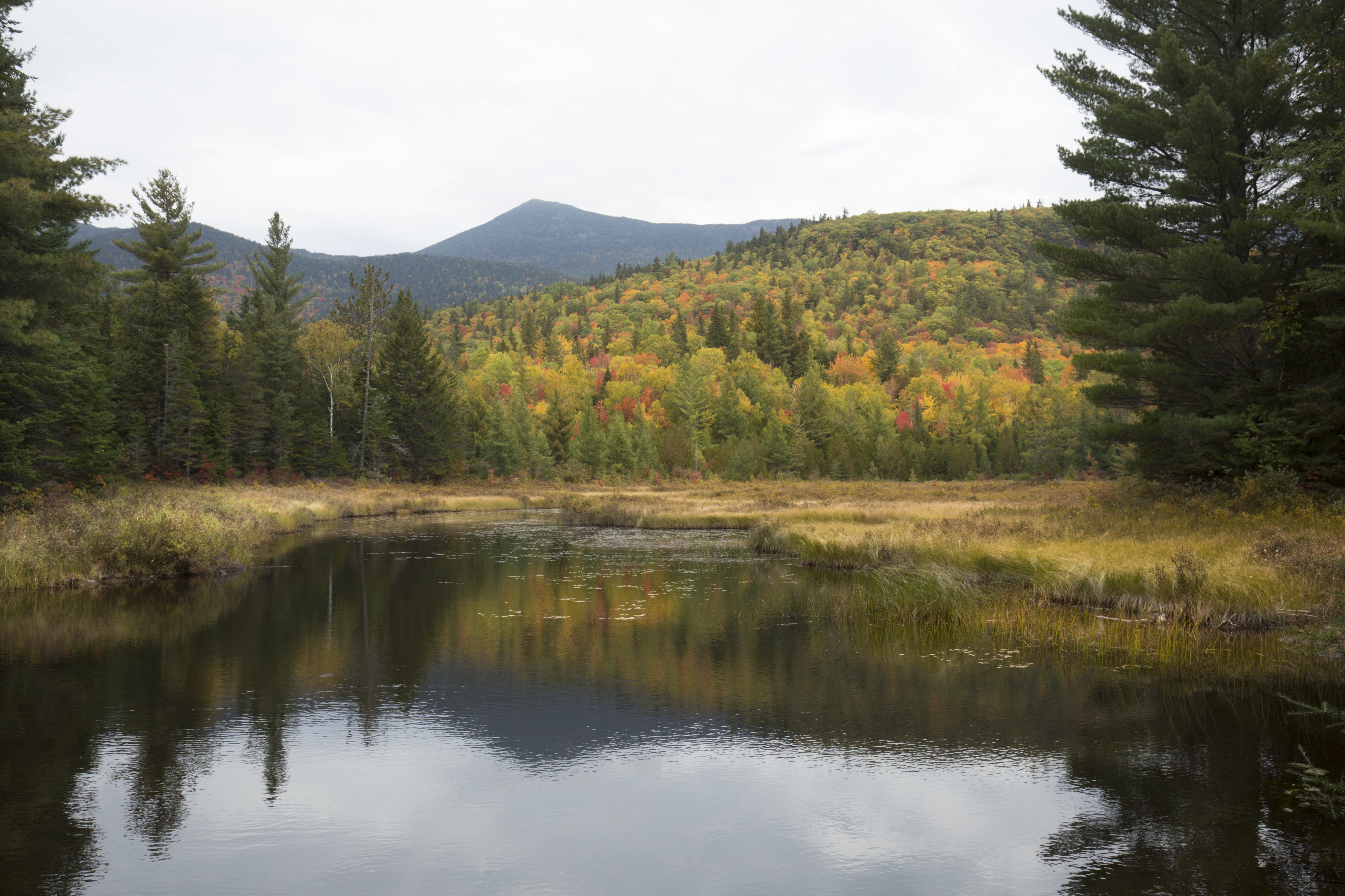 fall-colors-in-maine.jpg?mtime=20200124121744#asset:107779