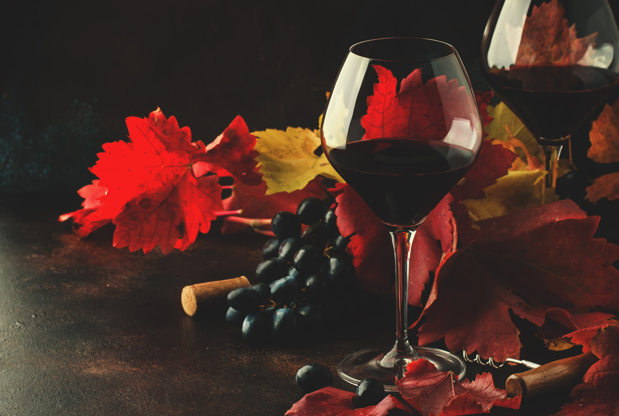 Pint Noir Wineglass with Fall Leaves
