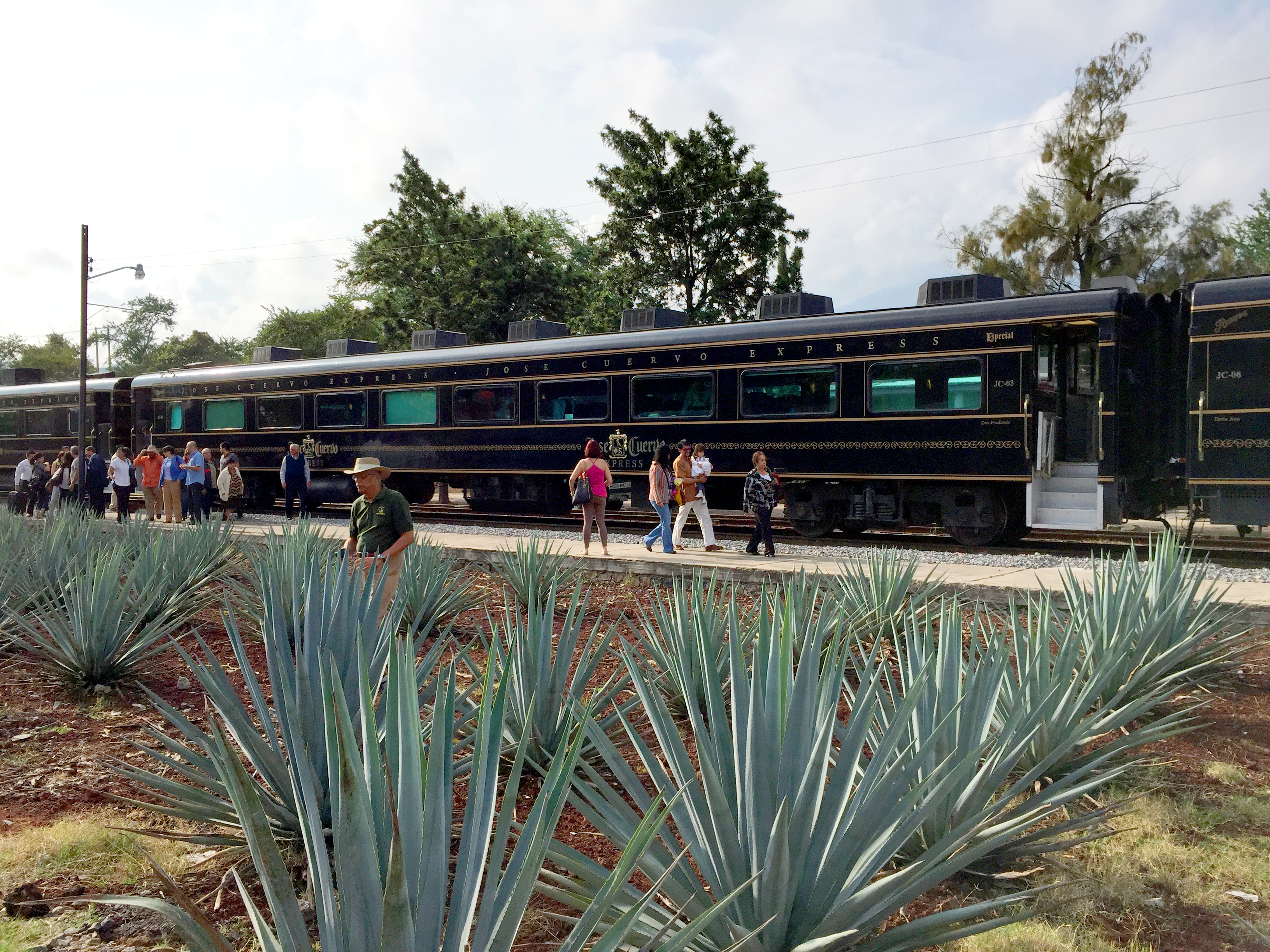 The Jose Cuervo Express, Tequila Mexico
